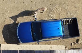 Bonaire Esel und Auto