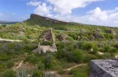 curacao ruinen und kakteen