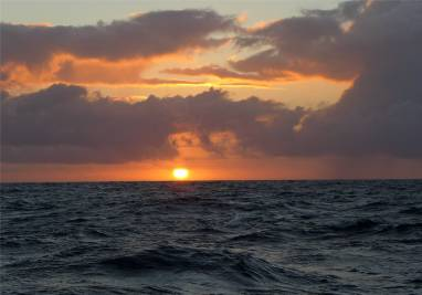 Pazifik Passage 21