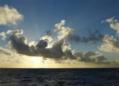 Pazifik Passage 24