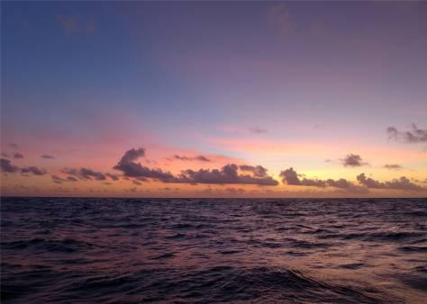 Pazifik Passage 26