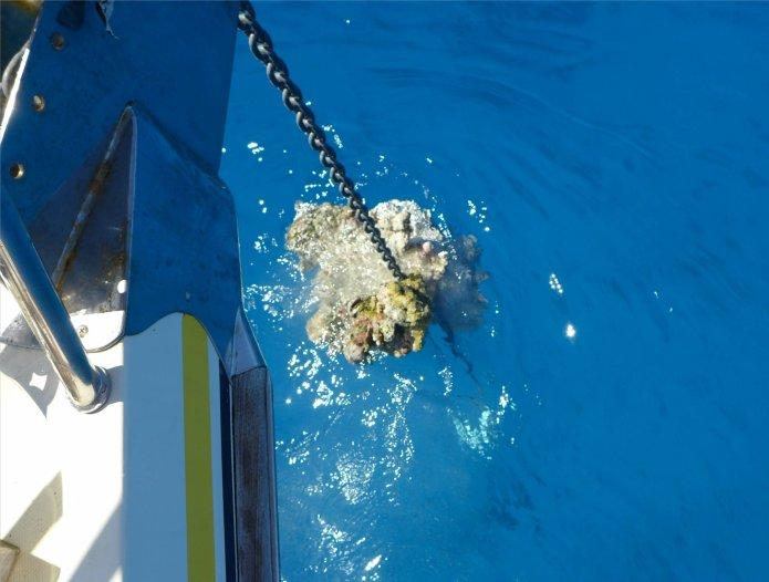 fp makemo korallenblock an der ankerkette8025325452634973919..jpg