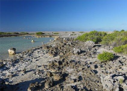 fp makemo punaruku eine wilde landschaft auf dem riff-36847476880556597771..jpg