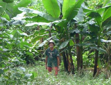 fp raiatea nobbi und die bananen1880094326952253451..jpg