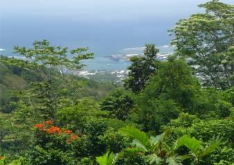 Samoa Apia tolle Aussicht auf den Hafen