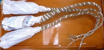 Fiji Kavawurzeln bereit zur Übergabe