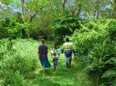 Fiji Makogai auf dem Bild sieht man die Millionen von Muecken nicht