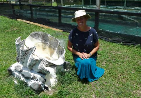 Fiji Makogai Riesenmuschel