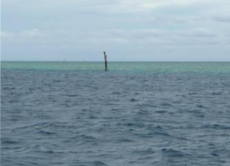 Fiji schoen wenn es die Seezeichen tatsaechlich gibt