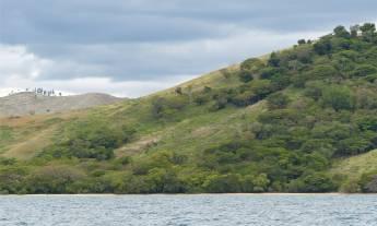 Fiji Viti Levu gruene Haenge