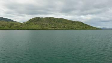 Fiji Viti Levu saftig gruen