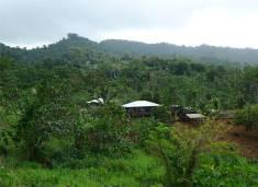 Samoa Haus 5