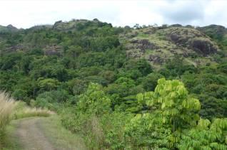 Fiji Orchideengarten auf dem Rundweg unterwegs
