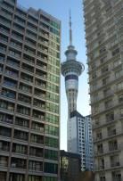 NZ Auckland Blick aus unserem Fenster