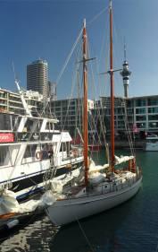NZ Auckland Hafen