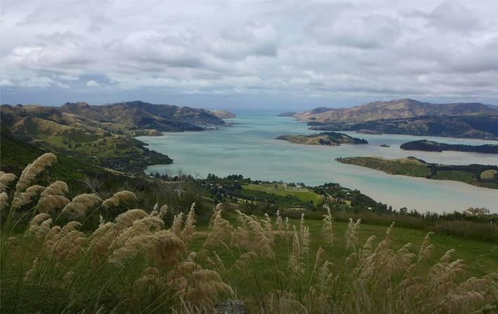 NZ Banks Halbinsel noch einmal schoene Ausblicke