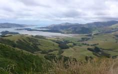 NZ Banks Halbinsel