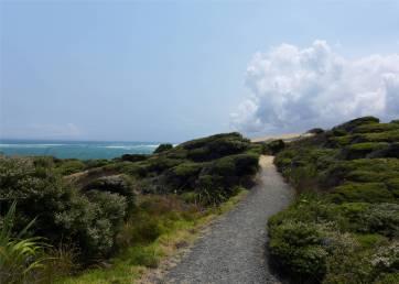 NZ Hokianga ein bequemer Wanderweg