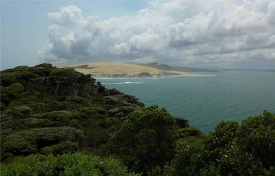NZ Hokianga grosse Duenen im Norden