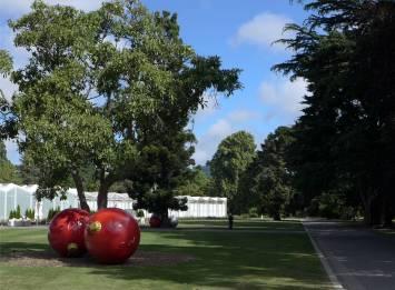 NZ im Botanischen Garten