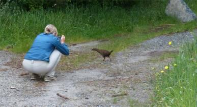 NZ Inga trifft Weka