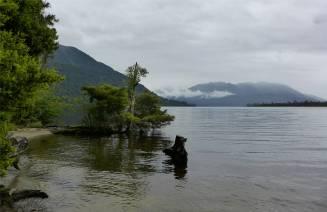 NZ Lake Brunner