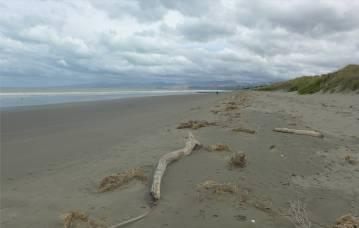 NZ New Brighton sehr viel Strand