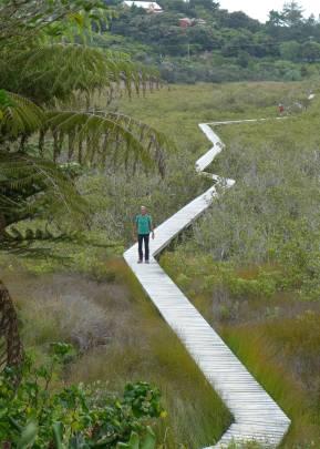 NZ Nobbi auf dem Holzweg