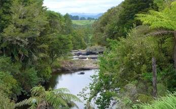 NZ Northland ein Wasserfall leider schwer zugaenglich