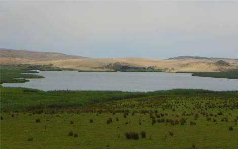 NZ Northland hohe Duenen im Westen