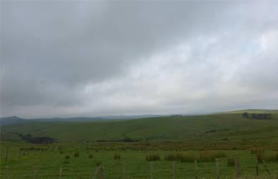 NZ Northland Weideland so weit das Auge reicht