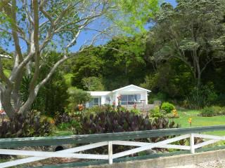 NZ Opua Coastal Walk dies gefaellt mir auch