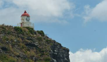 NZ Otago Peninsula der Leuchtturm