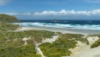 NZ Sandfly Bay die Duenen