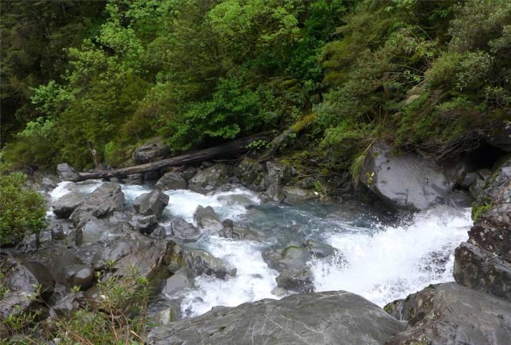 NZ Wanderung zum Wasserfall