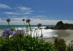 NZ Westkueste 10