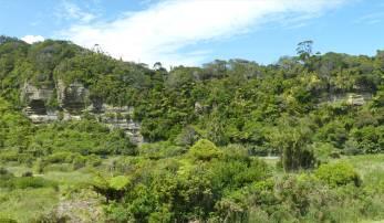 NZ Westkueste 3