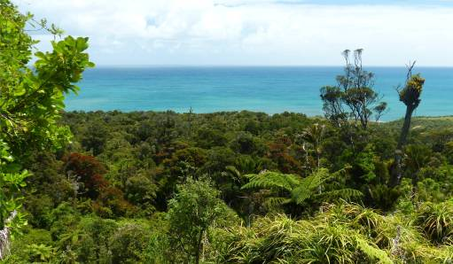 NZ Westkueste 4