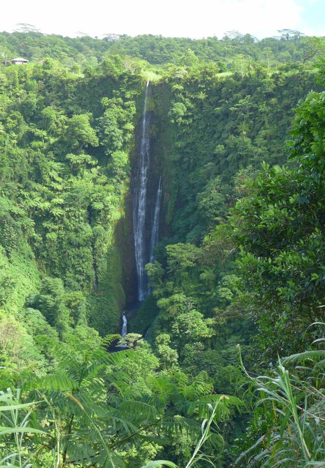 Samoa Papapapai Wasserfall