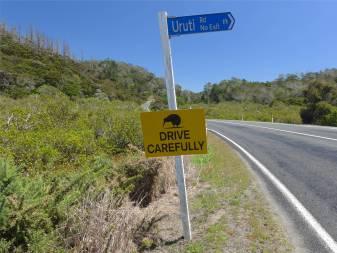 NZ ueberall die netten Kiwischilder
