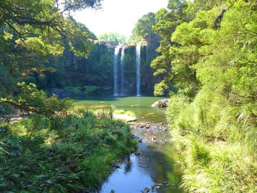 NZ Whangarei Wasserfall