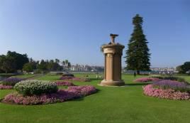 Sydney Blumenpracht im botanischen Garten
