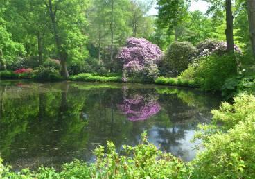 Bremen und umzu Rhododendronpark