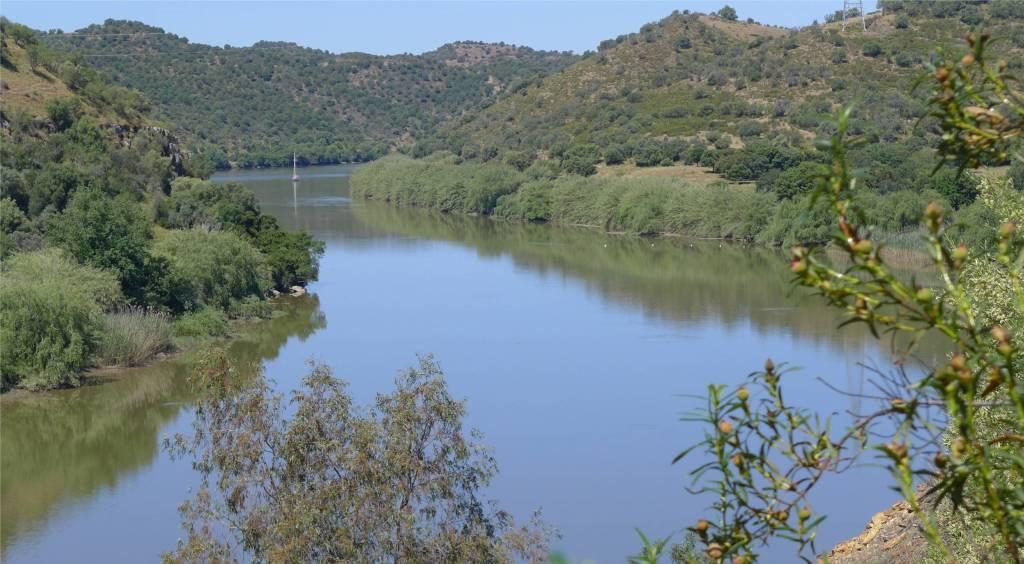 4 Mari auf dem Rio Guadiana