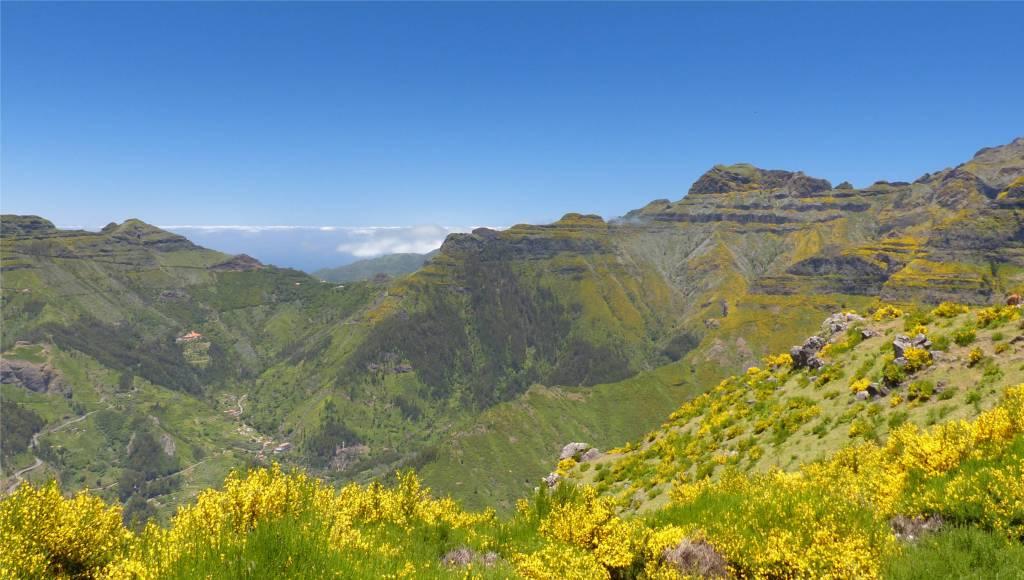 7 Madeira - in den Bergen