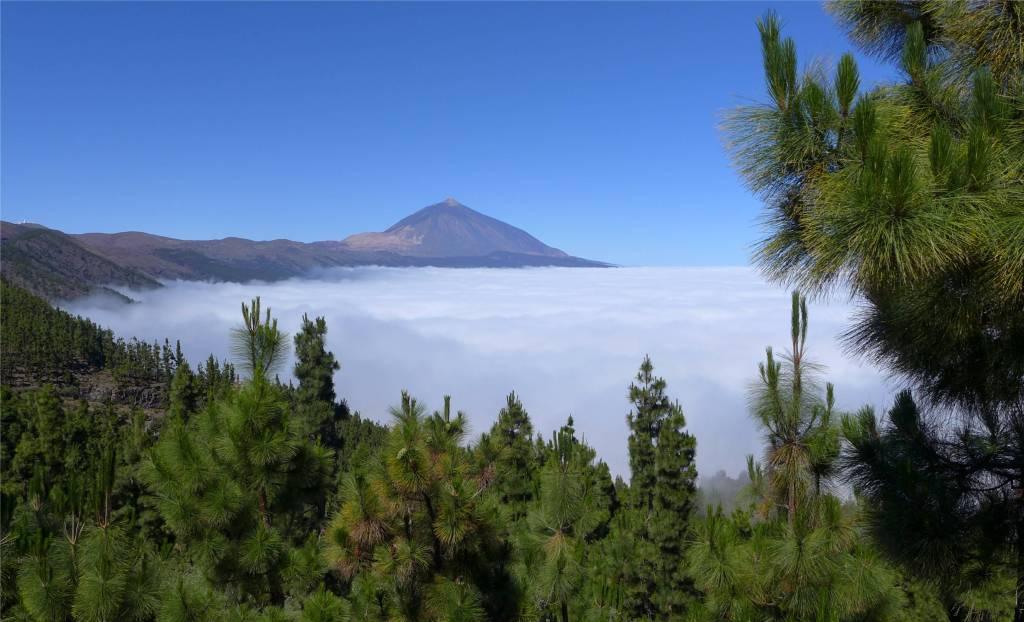 8 Teneriffa Blick auf den Teide